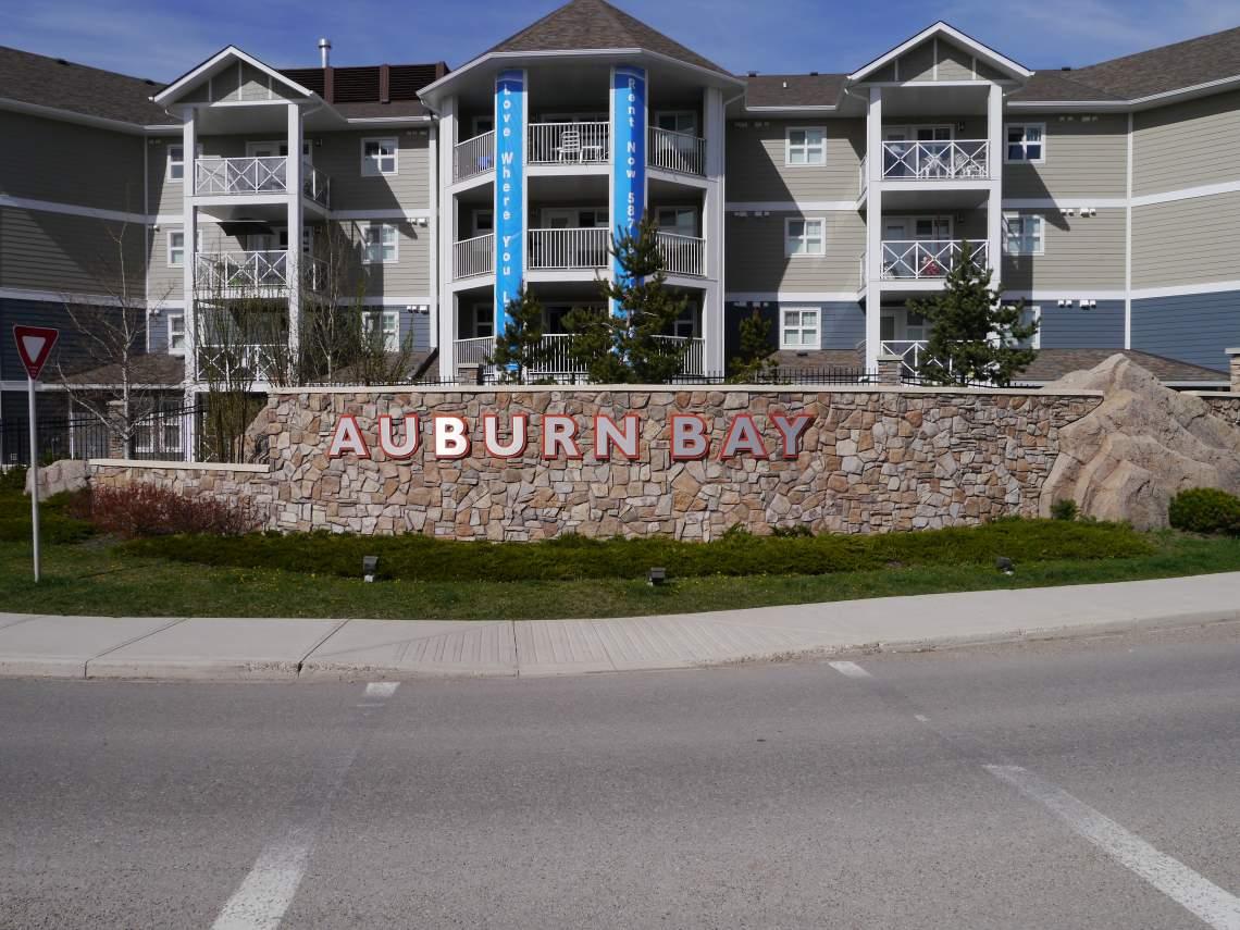 Auburn Bay 2